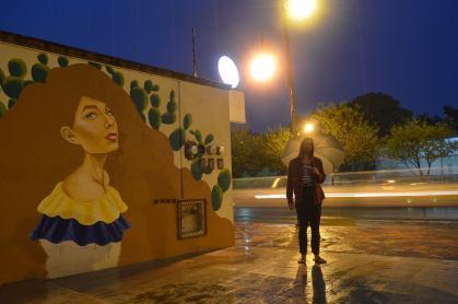Alejandro Pinpon Mural Venezuela México en Querétaro fotos by Creatigre noche 1